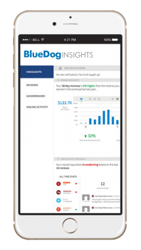 bluedog insights image